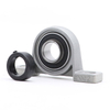 Well-known Brand YOCH Pillow Block Bearing UE207