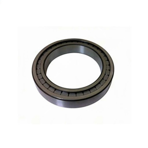 Rolling Mill Bearng/Cylindrical Roller Bearing/Full Complement Cylindrical Roller Bearing SL18 2918 SL18 3018 SL18 2218 SL18 2318