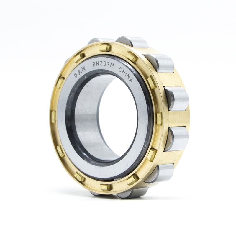 Good Price FAK Cylindrical Roller Bearing NCL310