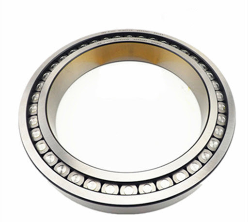 Full Complement Bearing SL183010 SL182210 SL182310 SL183012 SL182212 SL182312 Cylindrical Roller Bearing