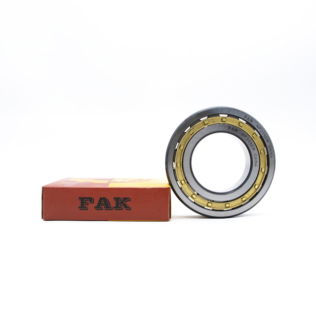 Discount Bearing FAK Cylindrical Roller Bearing NJ2310E