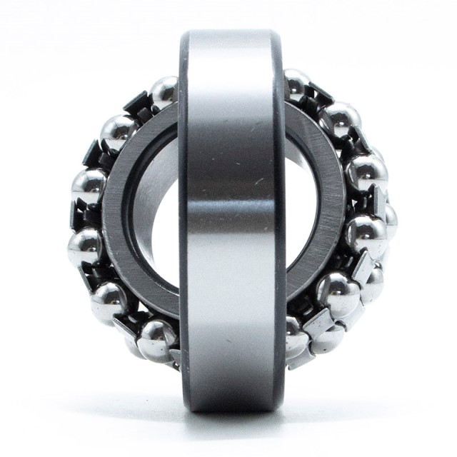 FAK Self-aligning Ball Bearing 1309K