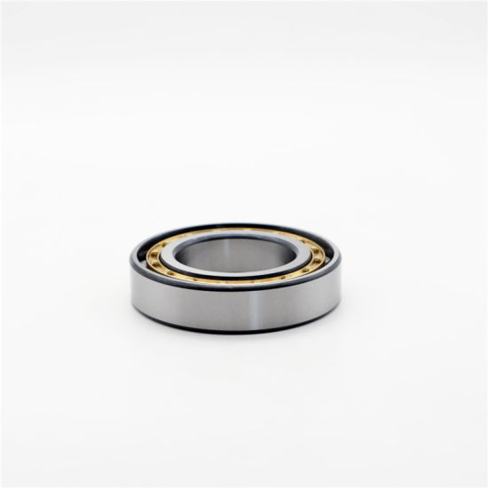China Manufacturer Supply Cylindrical Roller Bearing N311 N311m N311e N313 N311m N313e for Auto Parts