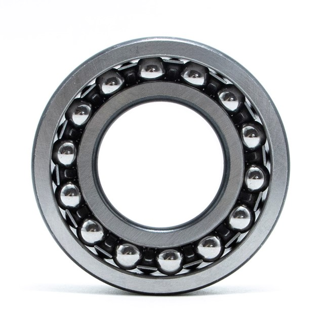 FAK Self-aligning Ball Bearing 1319M